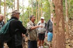 Skogspromenad längs Nam Ou
